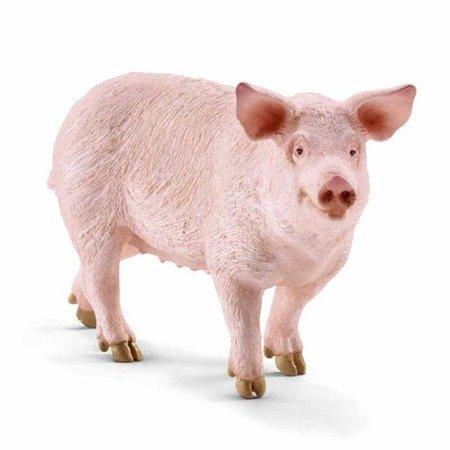 Schleich (SLH13782): Świnia